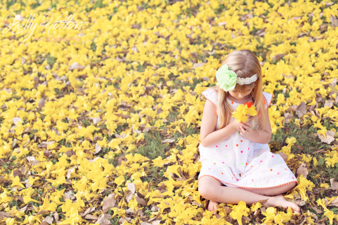 Rockhampton Child Photographer ~ Under a Yellow Tree